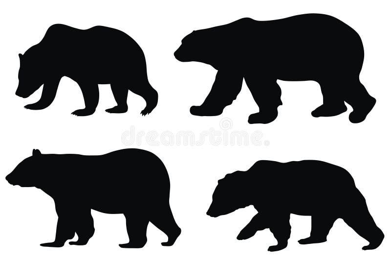 Bären vektor abbildung
