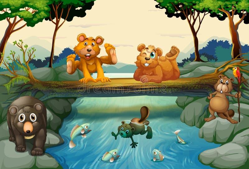 Bären und andere Tiere im Wald stock abbildung
