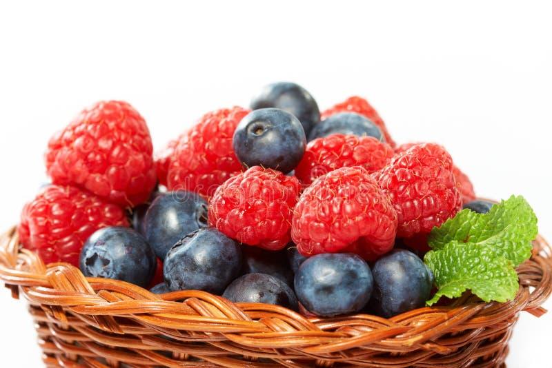 bärfrukter royaltyfri bild