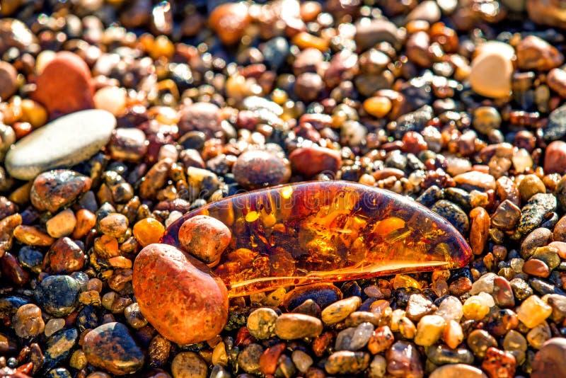 Bärnsten på en strand arkivfoton