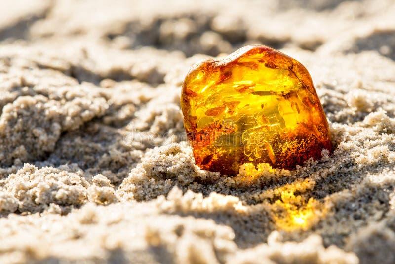Bärnsten på en strand av Östersjön royaltyfria foton