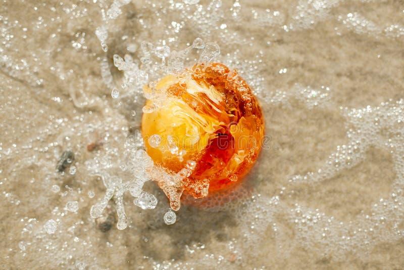 Bärnstensfärgad slut för färgstänk för baltiskt hav för sten boll format upp arkivfoto