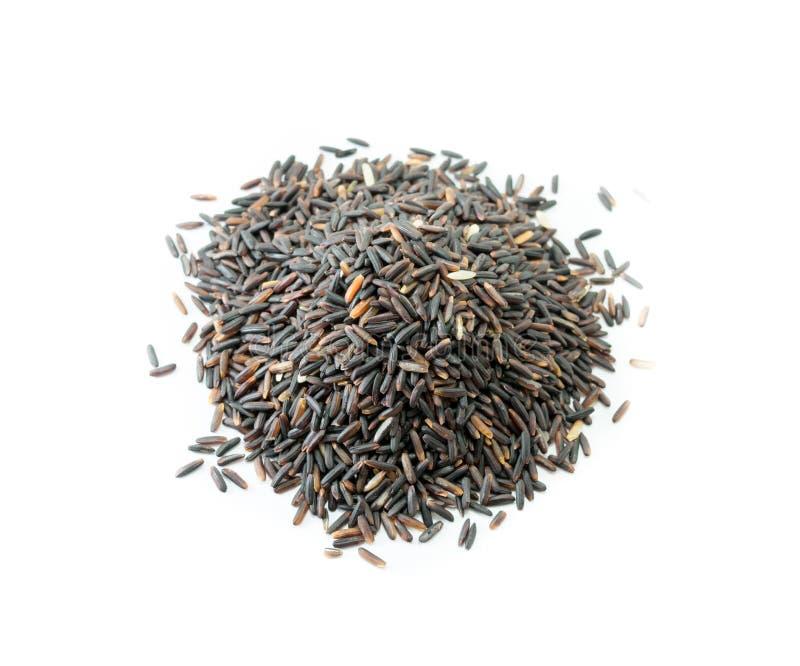 Bärris, organiska ris på vit bakgrund royaltyfria foton