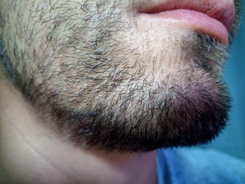 Bärtiger junger Mann, Stoppel nahe Unrasiert mehr als eine Woche stockbilder