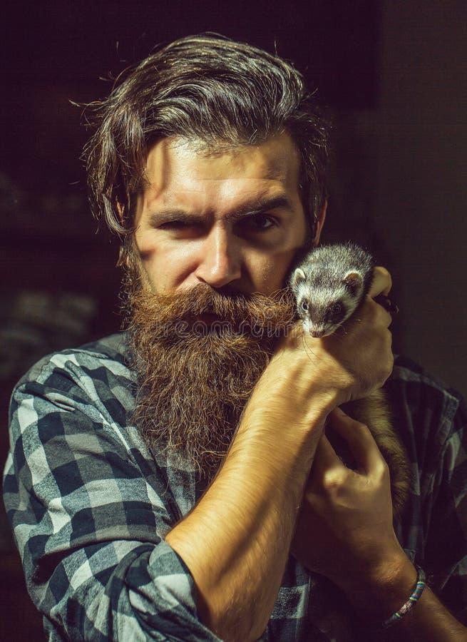 Bärtiger Mann mit nettem Frettchen stockfoto