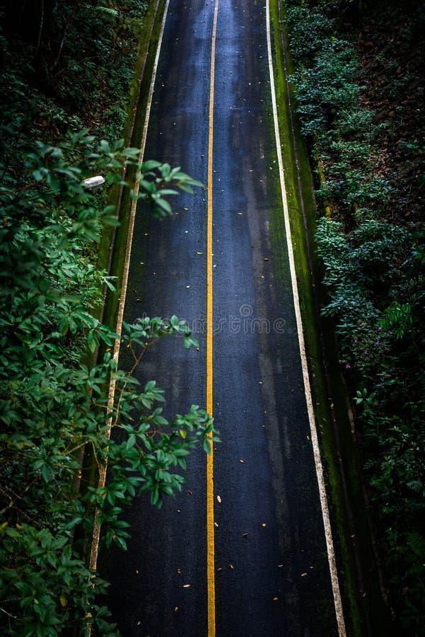 Bästa sikt av asfalttexturbakgrund Tom väg från bästa sikt royaltyfria bilder