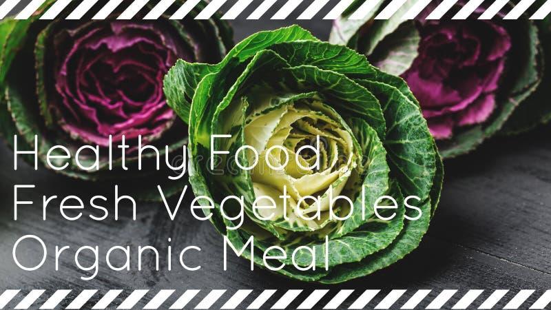 Bästa sikt av dekorativa kålar med vit, rosa färger och gräsplansidor Sund mat, nya grönsaker, organiskt mål arkivbild