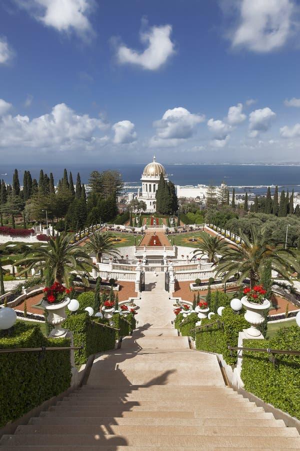 Bästa sikt av den Bahai trädgården och Haifaen, fotografering för bildbyråer
