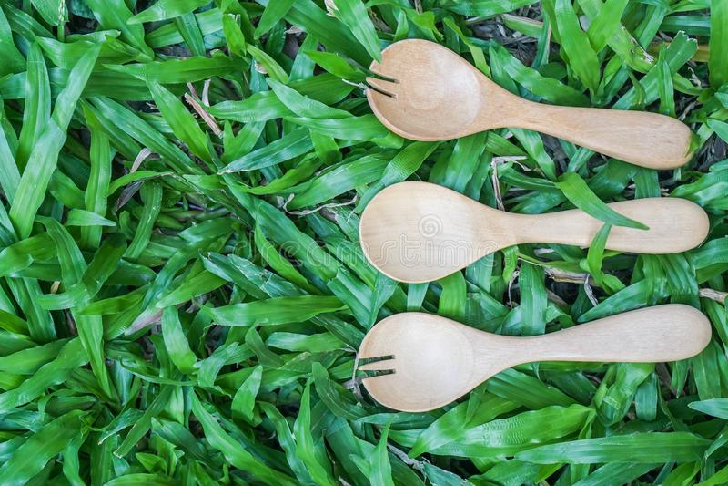 Bästa sikt av den träskeden och gaffeln på grönt gräs arkivbilder