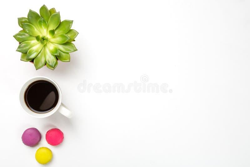 Bästa sikt av det tomma kontorsskrivbordet Grön växt i en kruka, en kopp kaffe och färgrika makron på vit bakgrund Kopieringsutry fotografering för bildbyråer