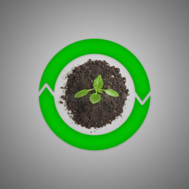 Bästa sikt av grodden som växer på jordningen och omger av gröna roterande runda pilar vektor illustrationer