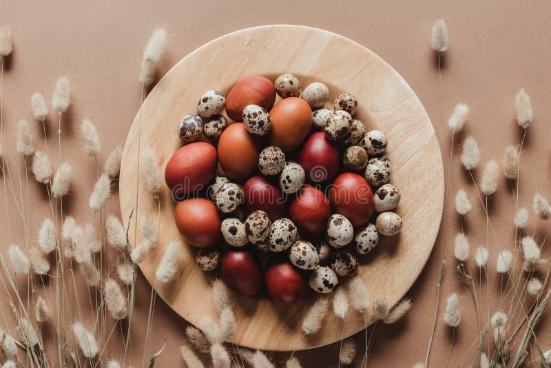 bästa sikt av höna- och vakteleaster ägg på träplattan med blom- öron royaltyfri bild