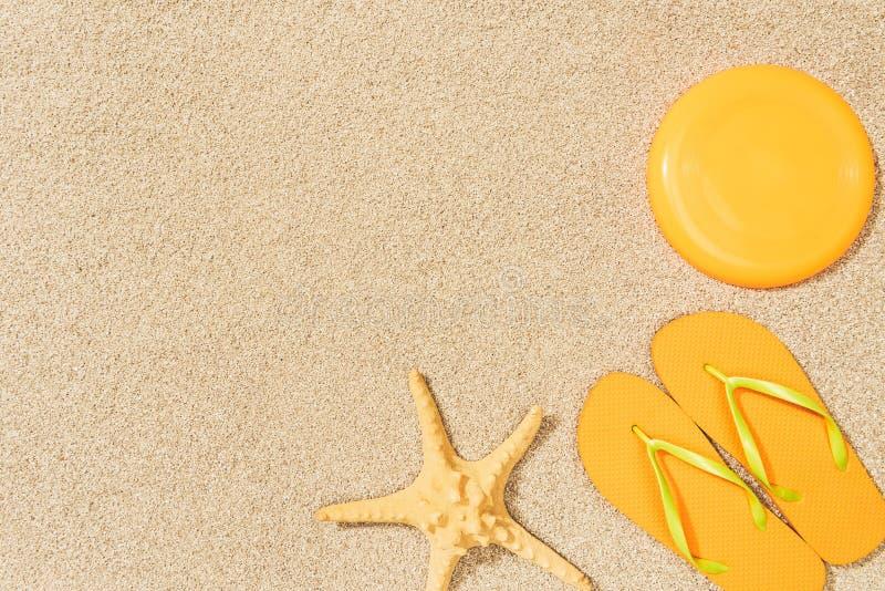 bästa sikt av havsstjärnan, gula flipmisslyckanden och flygskivan på sand arkivfoton