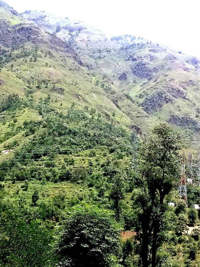 Bästa sikt av kullen från botten på Manali Himachal Pradesh i Indien royaltyfria foton