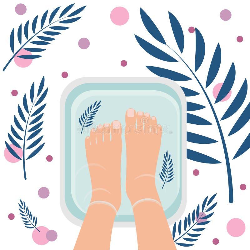 B?sta sikt av kvinnlig fot i badet f?r att rentv? Spa tillv?gag?ngss?tt, pedikyr Trevlig atmosf?r med v?xtsidor ocks? vektor f?r  royaltyfri illustrationer