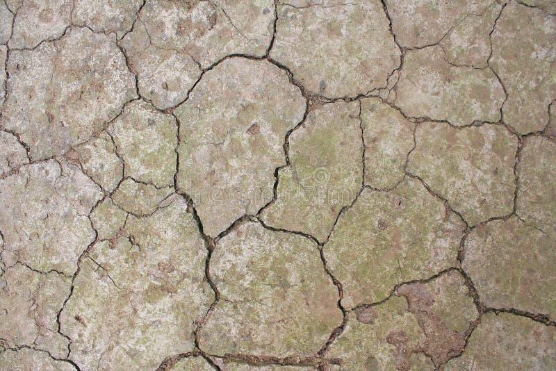 Bästa sikt av ointressant land med torr sprucken jordning arkivfoton