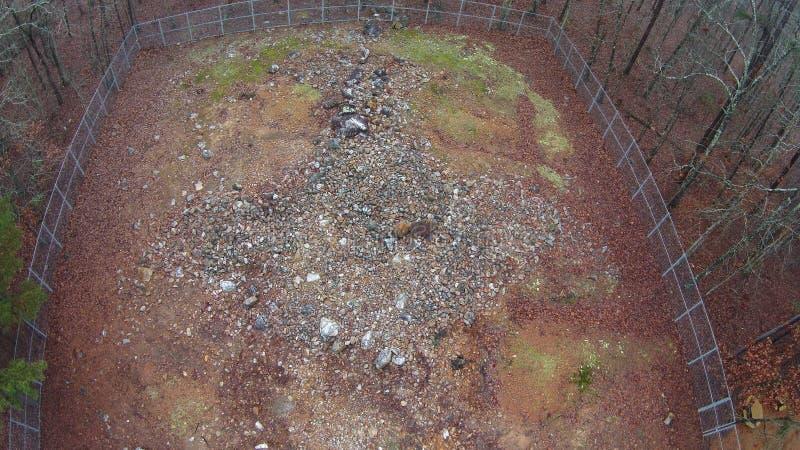 Bästa sikt av Rock Hawk Effigy Mound arkivfoton