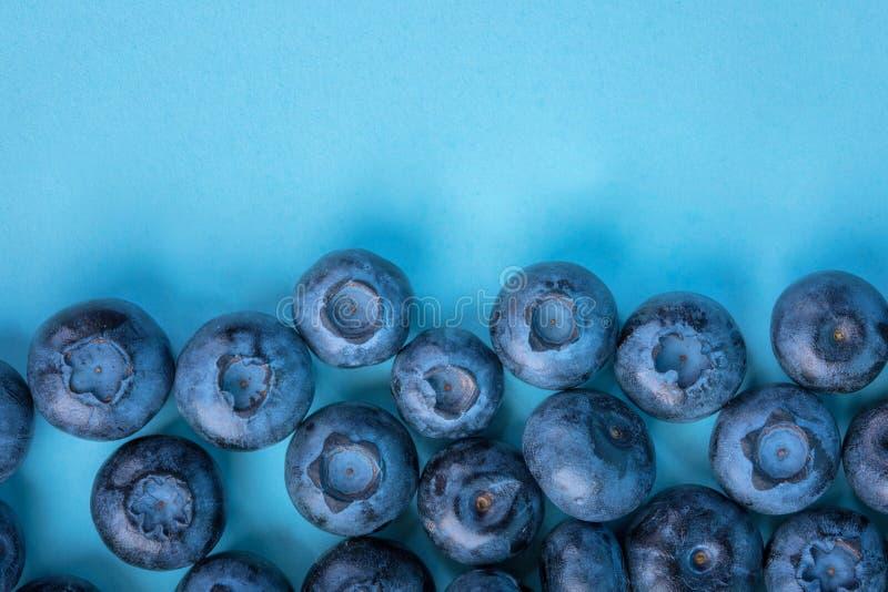 Bästa sikt av saftiga blåbär på en ljus blå bakgrund Nya, rå och mogna blåbär mycket av vitaminer Sommarfrukter, close- arkivbilder