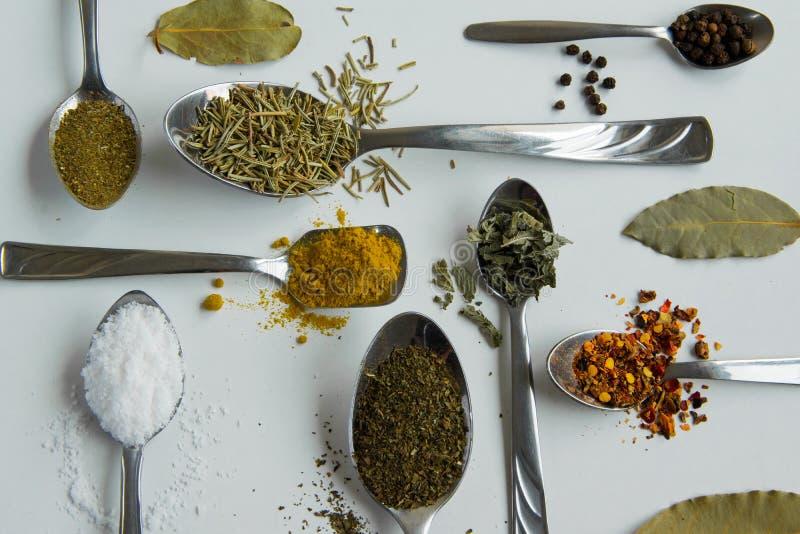 Bästa sikt av skedar med olika aromatiska örter och kryddor på vit bakgrund royaltyfri foto