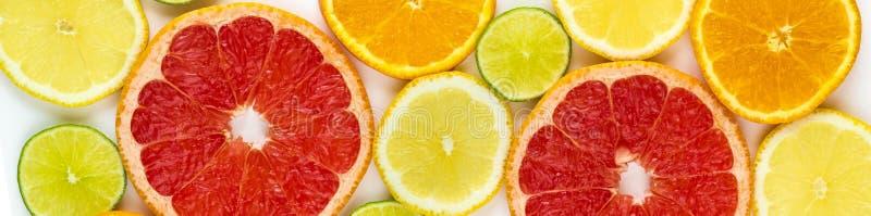 bästa sikt av skivor av citrusfrukter arkivbilder