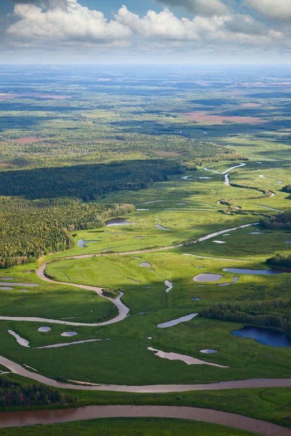 Bästa sikt av skogfloden arkivfoton