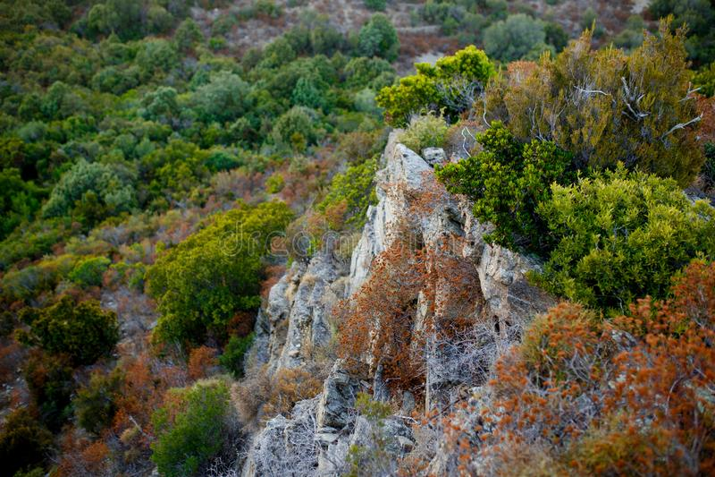 Bästa sikt av stora klippor av den bergiga terrängen och den kust- Korsika ön, Frankrike fotografering för bildbyråer