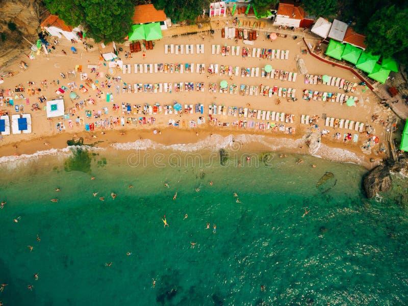 Bästa sikt av stranden Den flyg- sikten av den sandiga stranden med turister simmar arkivbild