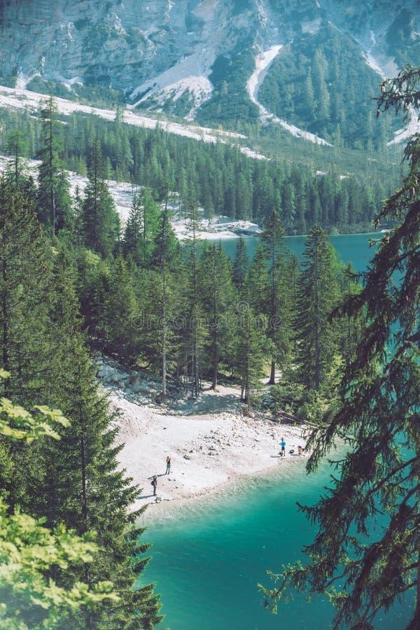 bästa sikt av stranden av sjön i dolomitesberg royaltyfri fotografi