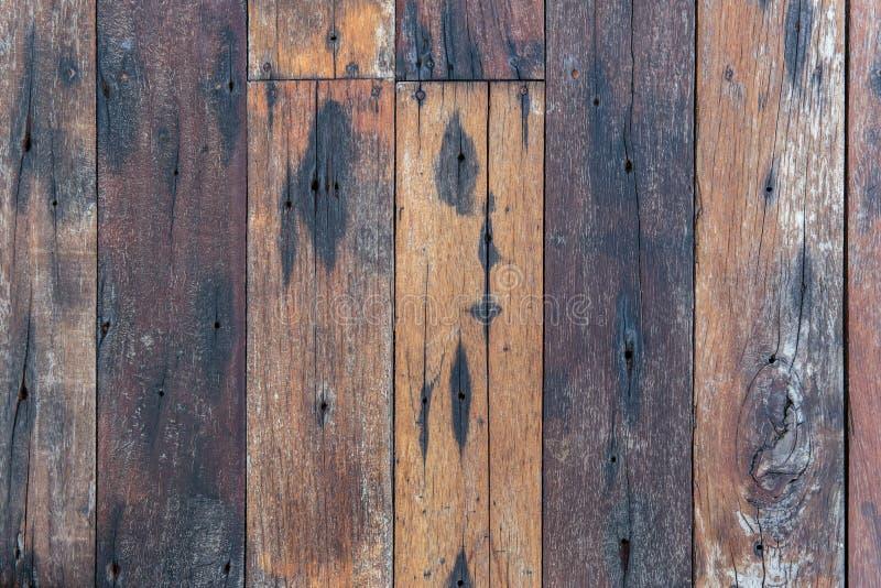 Bästa sikt av vägg eller golvet för färgrik eller mång- färg träför bakgrundstextur royaltyfria foton