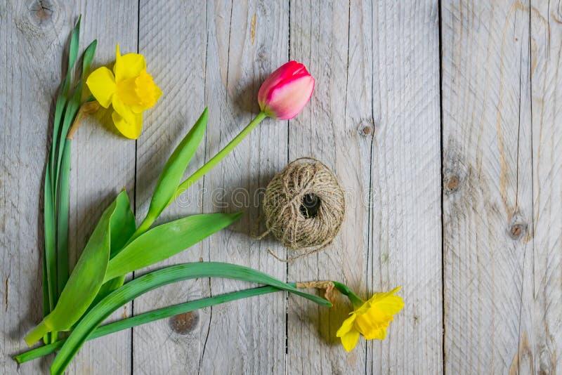 Bästa sikt av vårblommabuketten Gula påskliljor och rosa tulpan på träbakgrund kopiera avst?nd royaltyfria foton