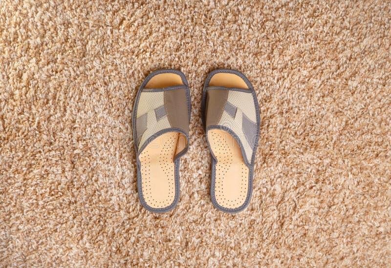 Bästa sikt för gråa läderhäftklammermatare arkivfoton