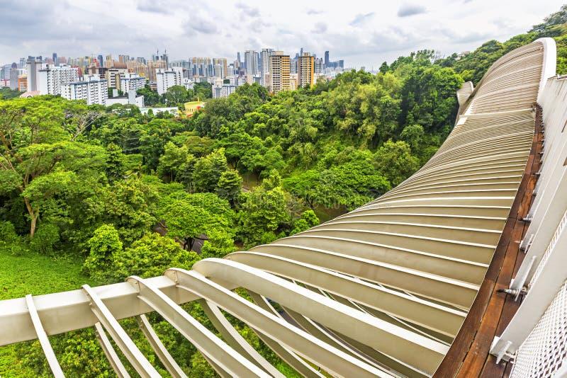 Bästa sikt för landskap av den Singapore Henderson Waves bron fotografering för bildbyråer