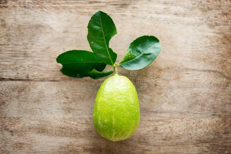 Bästa sikt för ny organisk grön citron royaltyfri foto