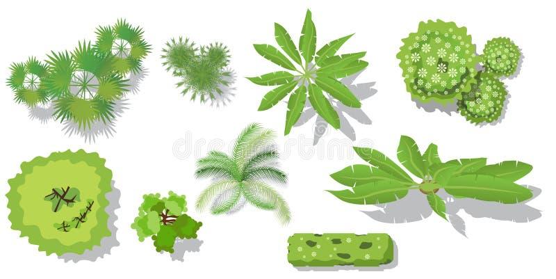Bästa sikt för träd för landskapvektorn som isoleras på vit bakgrund vektor illustrationer