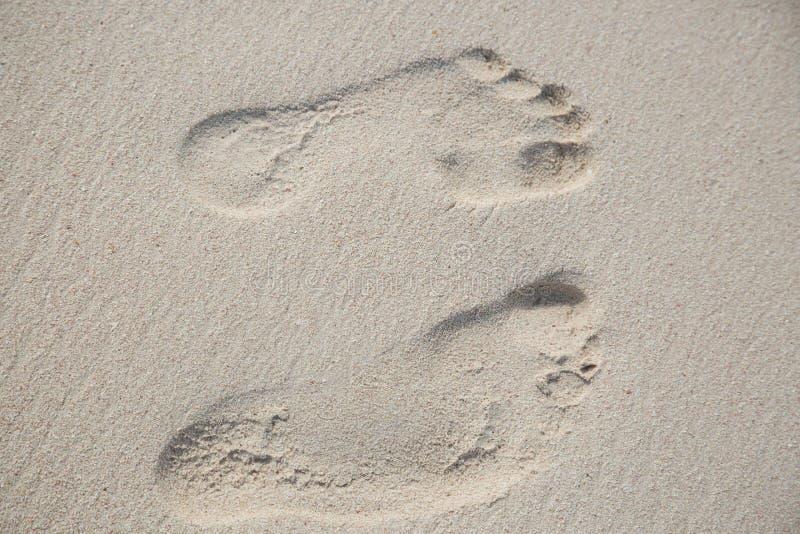 Bästa sikt från två fotspår i sandjordningen arkivfoton