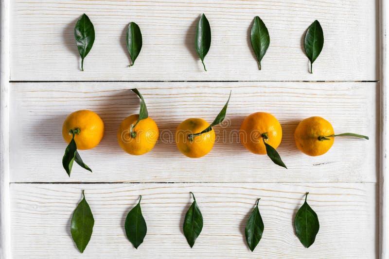 Bästa sikt till mandariner och deras gröna sidor som läggas ut i rader på vit träbakgrund arkivfoto