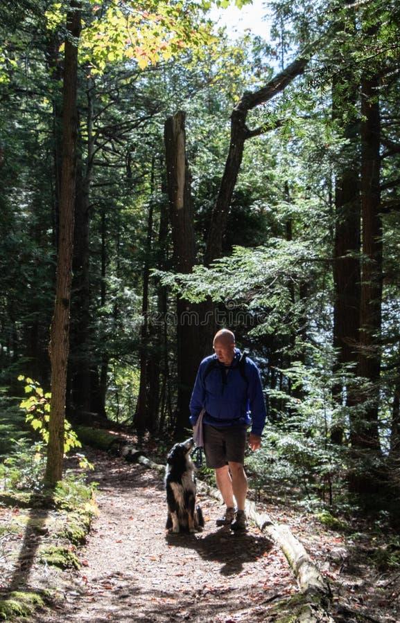 Bästa vän på en vandring i Algonquin parkerar Kanada arkivfoto