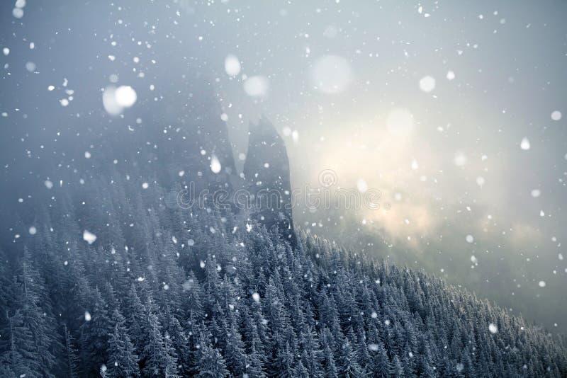 Bäume bedeckt mit Reif und Schnee in den Winterbergen - Chri stockbilder