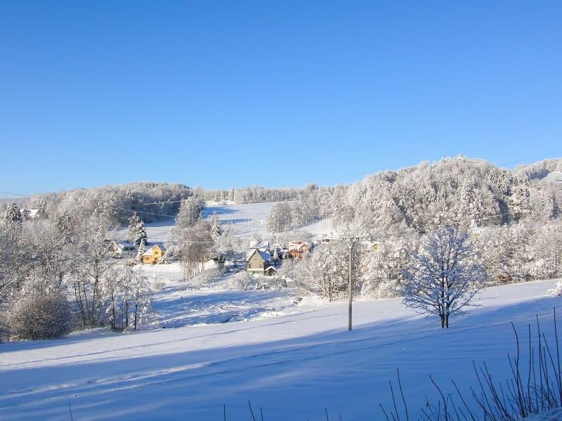 Bäume bedeckt mit Schnee auf einem Winterberg Winter in den Bergen stockfotos