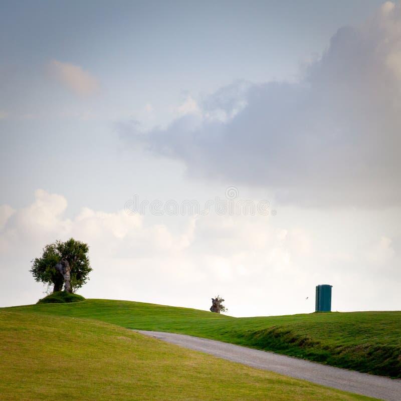Bäume in der Landschaft stockbild. Bild von bäume, farben - 39104085