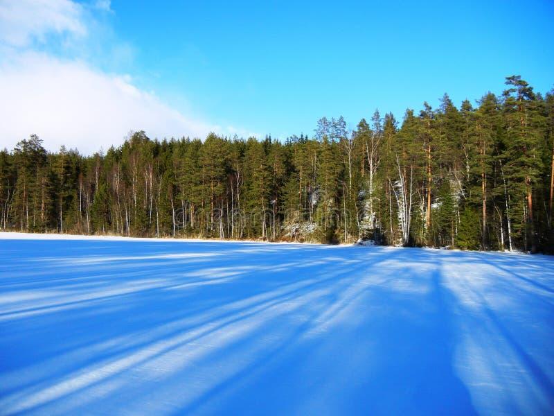 Bäume, die Schatten über einem gefrorenen See bedeckt im Schnee werfen stockfotografie