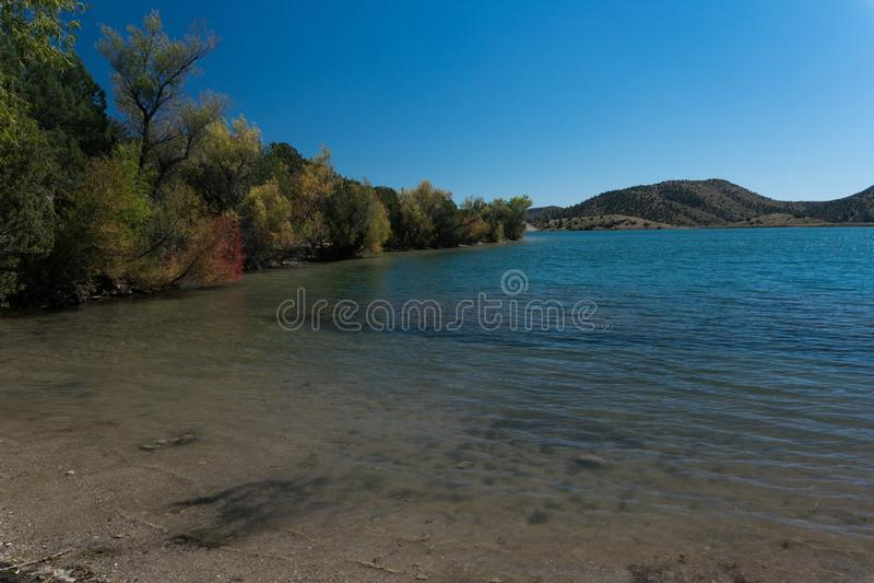 Bäume entlang Bill Evans Lake im New Mexiko stockfotos