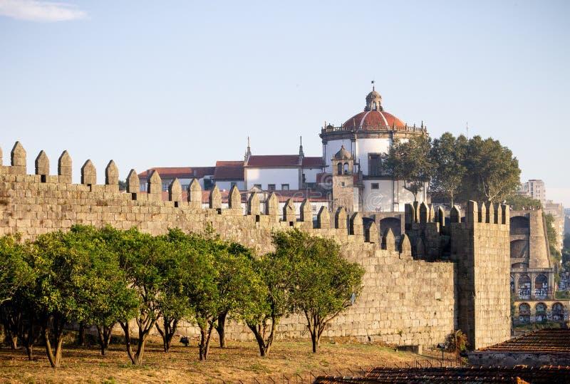 Bäume entlang den Fernandina-Wänden in Porto stockbilder