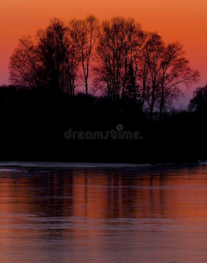 Bäume, gefrorener See und Sonnenuntergang lizenzfreies stockfoto