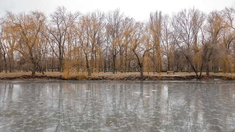Bäume im Park im Herbst stockbild