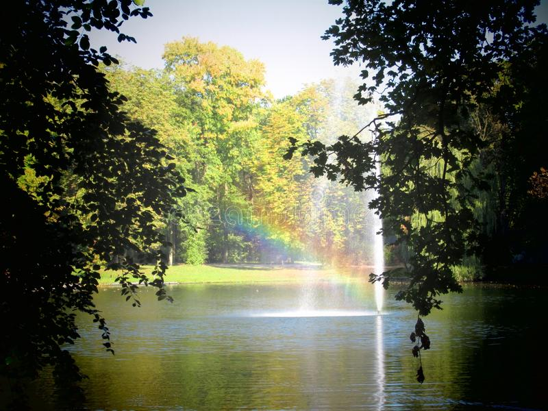 Bäume Kaisergarten Deutschland Autumn Nature lizenzfreies stockfoto