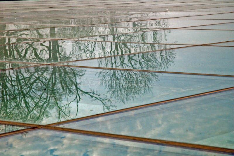 Bäume reflektierten sich im Glas lizenzfreies stockfoto