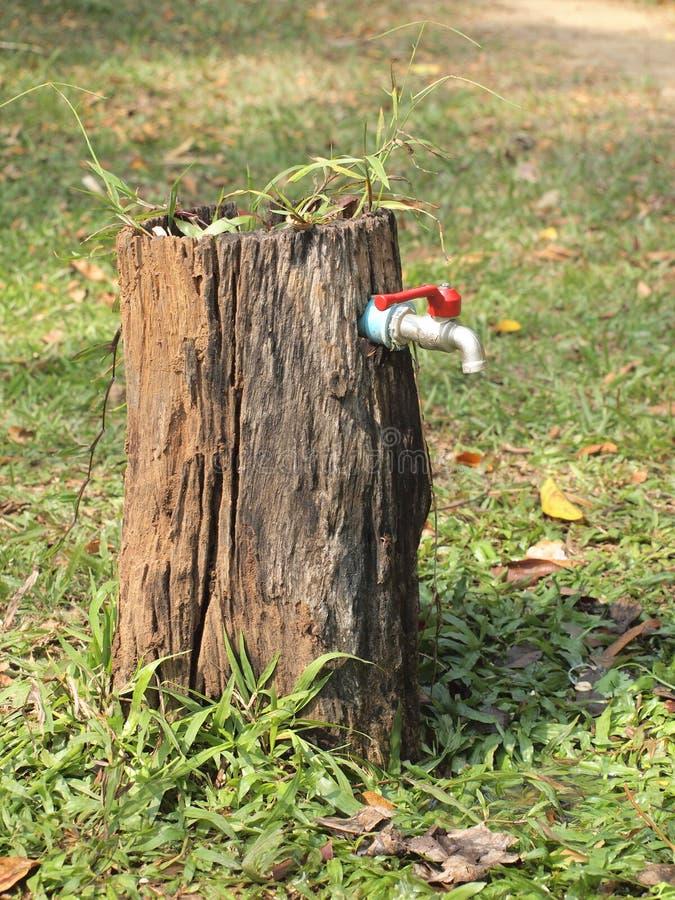 Bäume stützen unser Leben geben uns von Baum vorbei etwas Wasser zu Hahnventil stockfotos