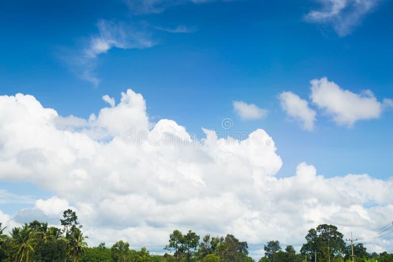 Bäume und bewölkte Landschaft der Wolke des blauen Himmels stockfotos