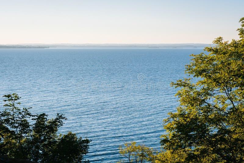 B?ume und eine Ansicht Chesapeake Bays am Elch-Hals-Nationalpark, Maryland stockfotografie